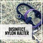 halter bacteria, how to disinfect