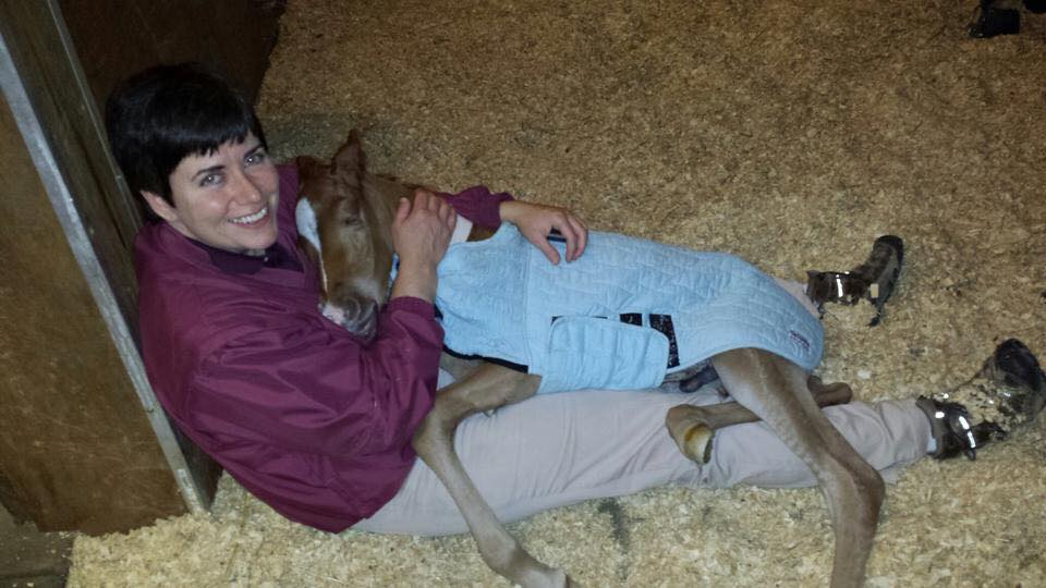 Dr Dawn Mrad and Foal