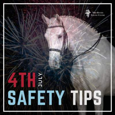 4th of July Safety Tips and Tricks for Horses