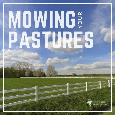 Benefits of mowing pastures to horses