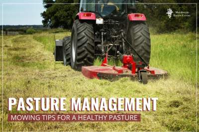 Pature Managment Mowing tips for a healthy pasture