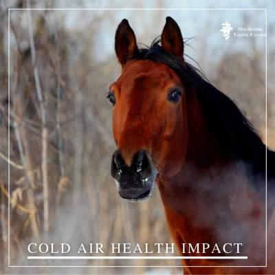 cold air health impact